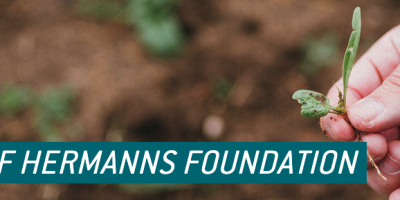 2020 Hermann foundation research award